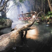 ジャングルクルーズ:ワイルドライフ・エクスペディションの写真